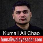 https://www.humaliwalayazadar.com/2019/09/kumail-ali-chao-nohay-2020.html
