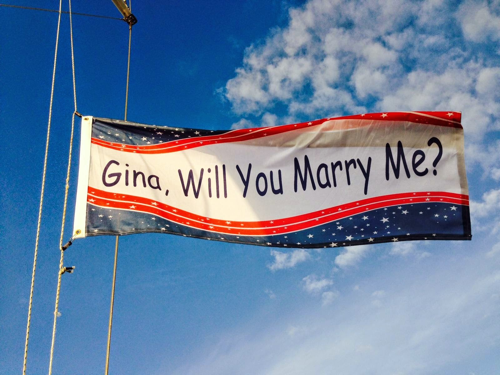 Will You Marry Me Flag - Printed by Banners.com