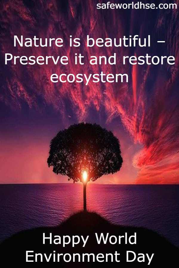 Ecosystem restoration slogans, quotes, messages | World Environment day