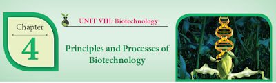 CLASS 12 BIOLOGY BOTANY - CHAPTER 4 PRINCIPLES AND PROCESSES OF BIOTECHNOLOGY - 1 MARK QUESTIONS - ONLINE TEST