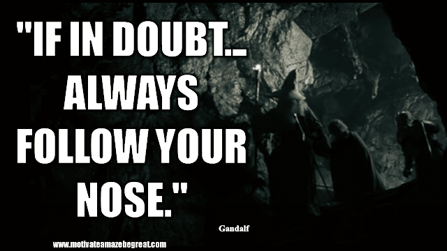 """Gandalf Quotes For Wisdom And Inspiration: """"If in doubt... Always follow your nose."""" - Gandalf"""