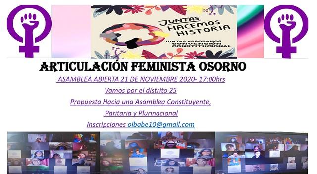 Articulación Feminista Osorno