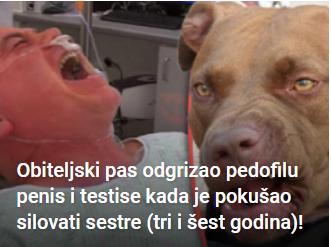 Obiteljski pas odgrizao pedofilu penis i testise kada je pokušao silovati sestre (tri i šest godina)!