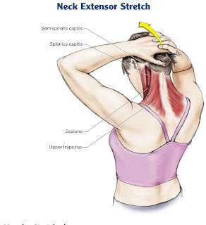 Neck Stretching Tips