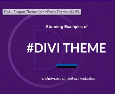 Divi v3.0 Wordpress Theme