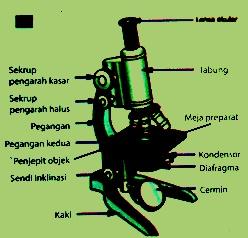 Fungsi dan Bagian Mikroskop serta Cara Menggunakannya