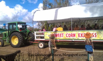 Eclectic Red Barn: Sweet Corn Express at the Long and Scott Farm
