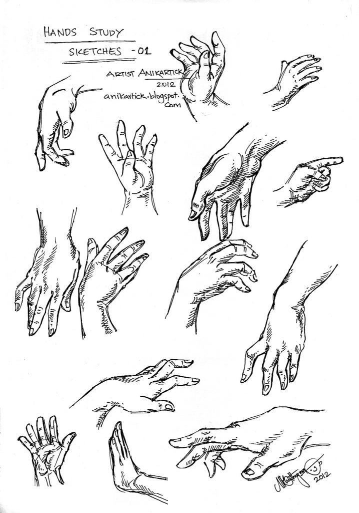 hands study hands sketches how to draw hands in many poses