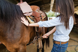 https://www.dreamstime.com/mid-adult-female-rider-saddling-brown-horse-tightening-straps-stable-woman-tightening-horse-saddle-horseback-riding-image133369917#res1853317
