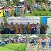 Petani Desa Karya Mulya Ramai-ramai Hijrah ke Organik