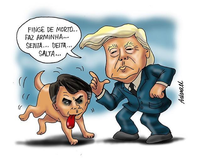 Brasil | Trump chuta seu vira-lata sarnento
