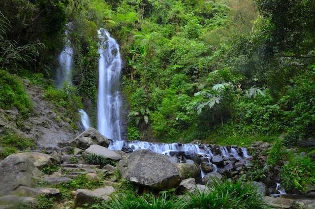 Tempat Wisata di Daerah Puncak Bogor