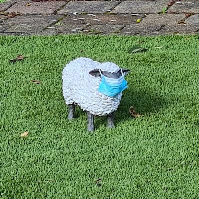 Fun model sheep wearing mask, East London