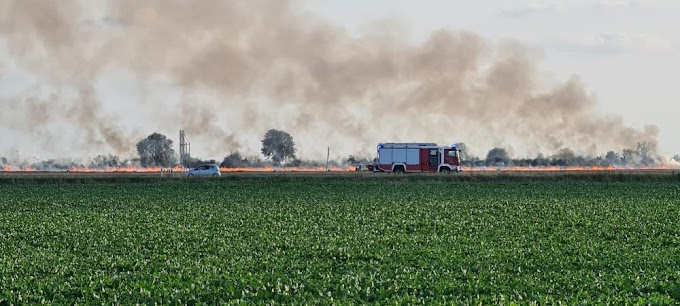 Feldbrand bei Mölz hält Feuerwehr in Atem