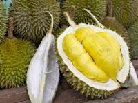 Tips dan Trik Memilih Buah Durian Yang Matang dan Manis