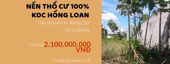 ban nen hong loan d26