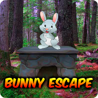 Play AvmGames Bunny Escape