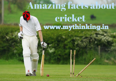 Amazing facts about cricket in hindi, interesting facts about cricket