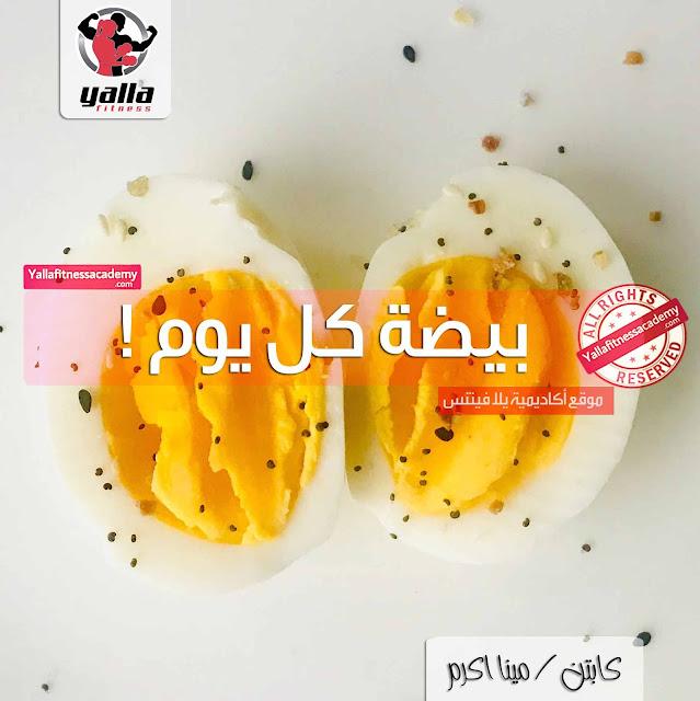 ماذا يحدث لجسمك إذا أكلت بيضة كل يوم !