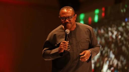 People Will Stop Shouting Over What Senators Earn If I Reveal What Governors Earn - Peter Obi