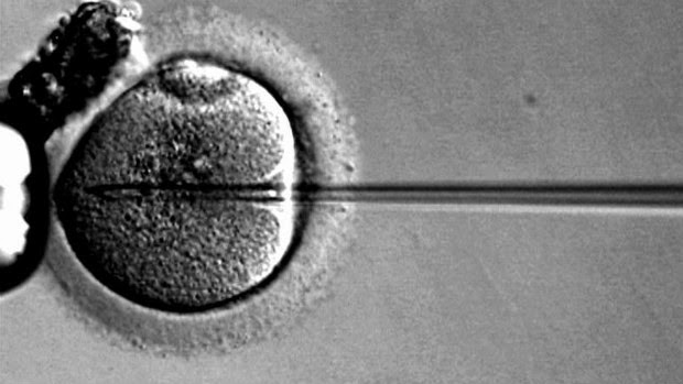 Reproductive Technology and Gay Marriage