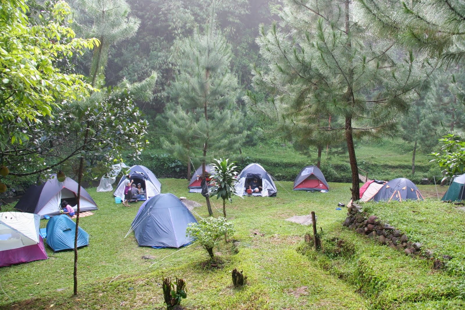 5 Tempat Camping di Puncak Bogor yang Sejuk