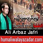http://www.humaliwalayazadar.com/2015/04/ali-arbaz-jafri-nohay-2014-to-2016.html