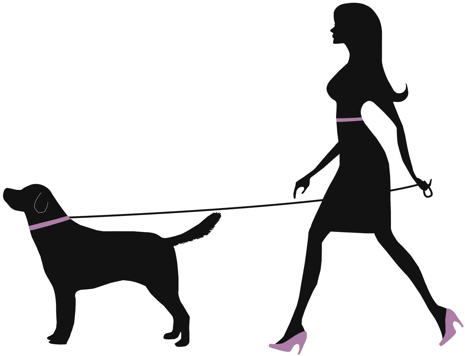 Dog Walker Vantagens Dos Passeios Para Seu Cao