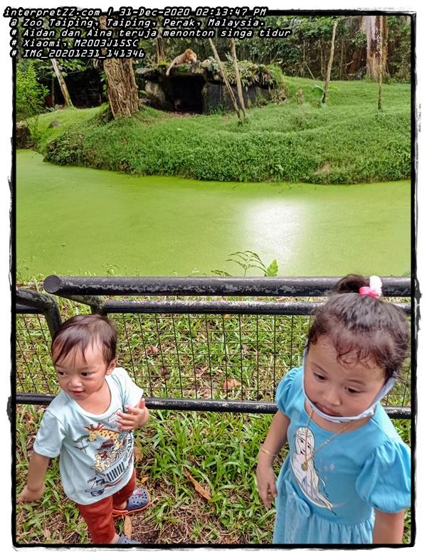Gambar Aidan dan Aina teruja melihat Singa di Zoo Taiping. Air parit yang memisahkan antara Singa dan pengunjung zoo nampak hijau. Mungkin tidak dibersihkan dan boleh difahami kenapa tidak dibersihkan # Thursday, 31 December 2020, 14:13 # 20201231 # IMG_20201231_141346.jpg # Xiaomi M2003J15SC #