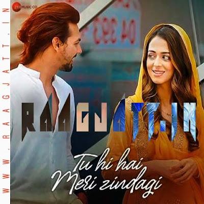 Tu Hi Hai Meri Zindagi by Nikhil D Souza lyrics