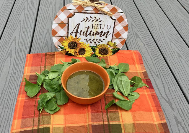autumn spinach soup- oil-free