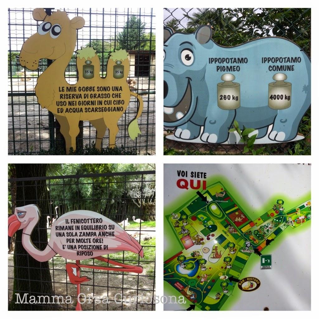 cartelli animali