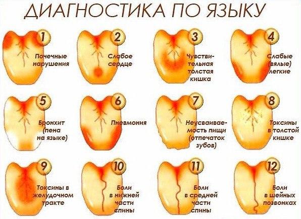 оплату жилого язык и состояние здоровья всей России