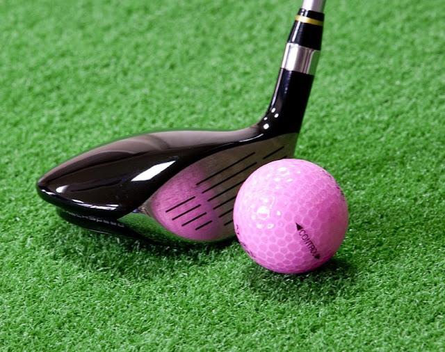 Metamora High School Redbirds Girls Varsity Golf 8/15/2019