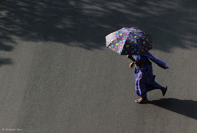 A Lady in Blue Saree crossing the street with an Umbrella to protect herself from the Summer Heat in Jaipur, India