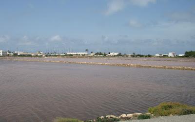 Estany de Pexi. Salinas de Formentera