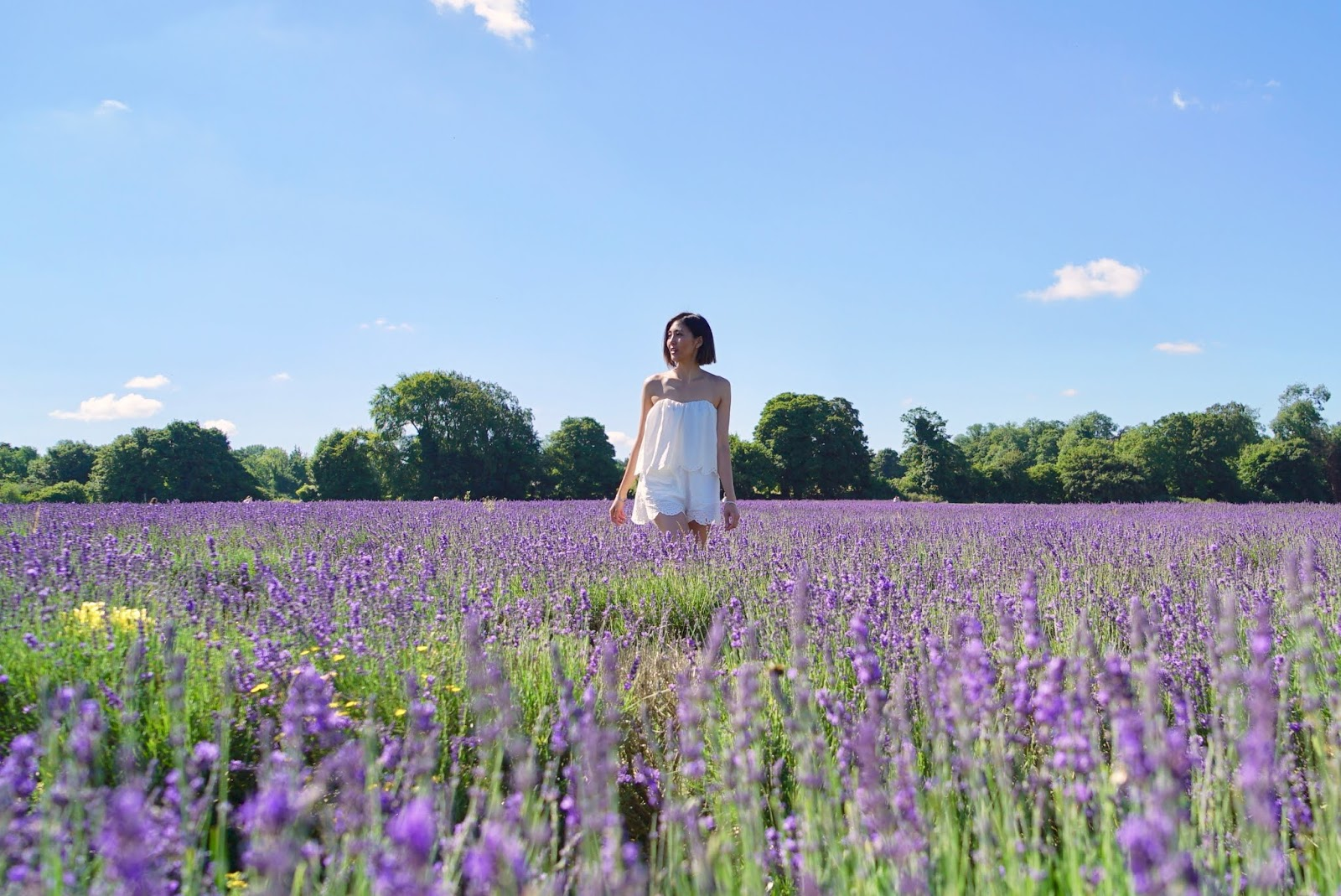MAYFIELD LAVENDER FIELD & WHITE EMBROIDERED PLAYSUIT