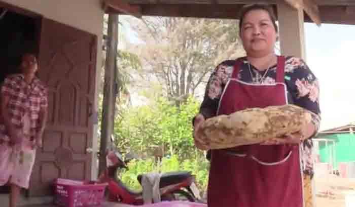 Woman finds lump of precious whale vomit ambergris worth around 2 crore in Thailand, Thailand, News, Local News, Woman, Sea, World