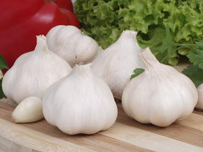 10 Health Benefits of Garlic