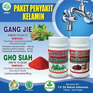 Obat herbal untuk penyakit gonore atau kencing bernanah
