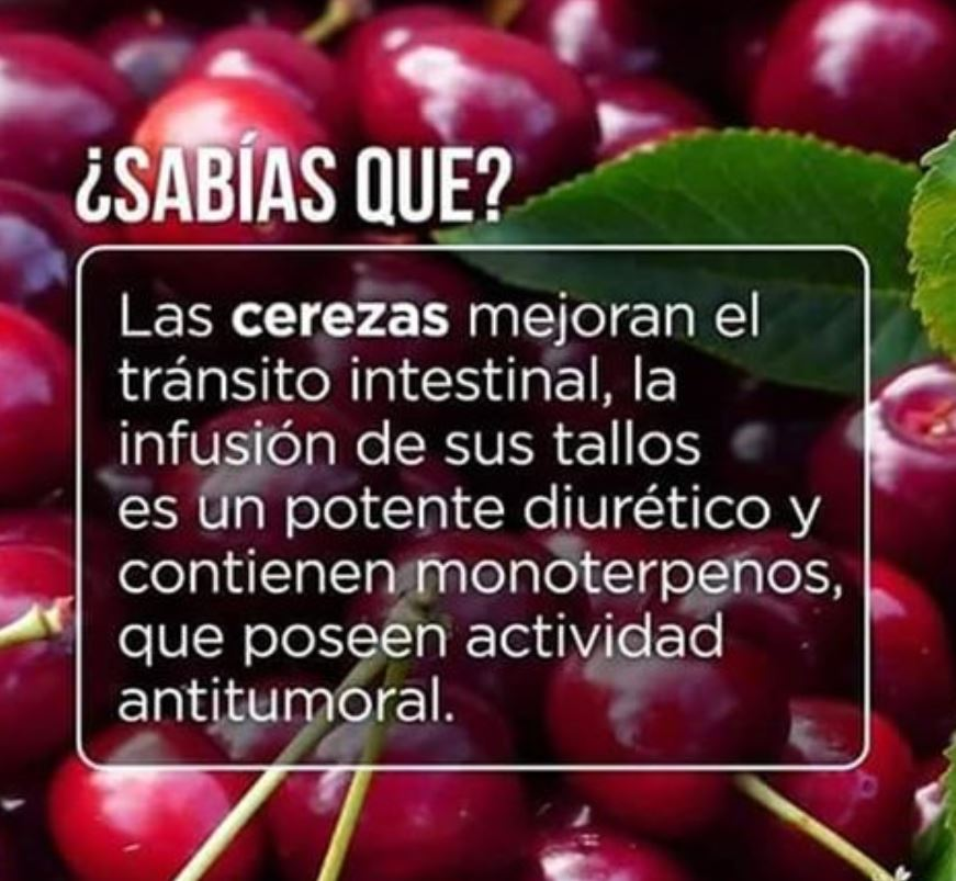 DIETAS SANAS PARA ADELGAZAR | RECETAS FÁCILES PARA COMER SANO