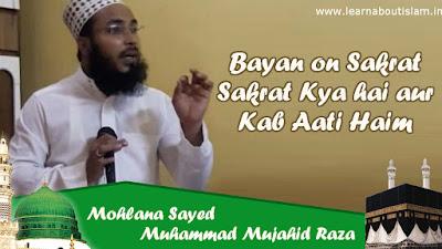Sakarat Al Mawt  - What is Sakrat ul Maut By Sayed Mujahid Raza