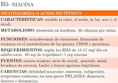 Vitamina B3 fuentes propiedades funciones