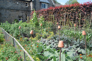 A working kitchen garden