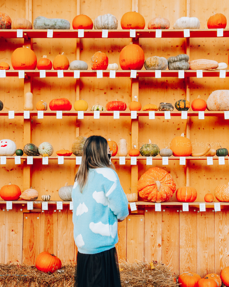 Ludwigsburg Pumpkin Festival Pumpkins