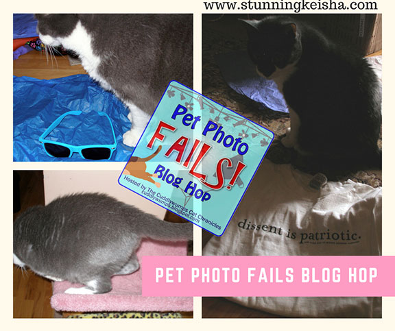 July Photo Fails & Much More!