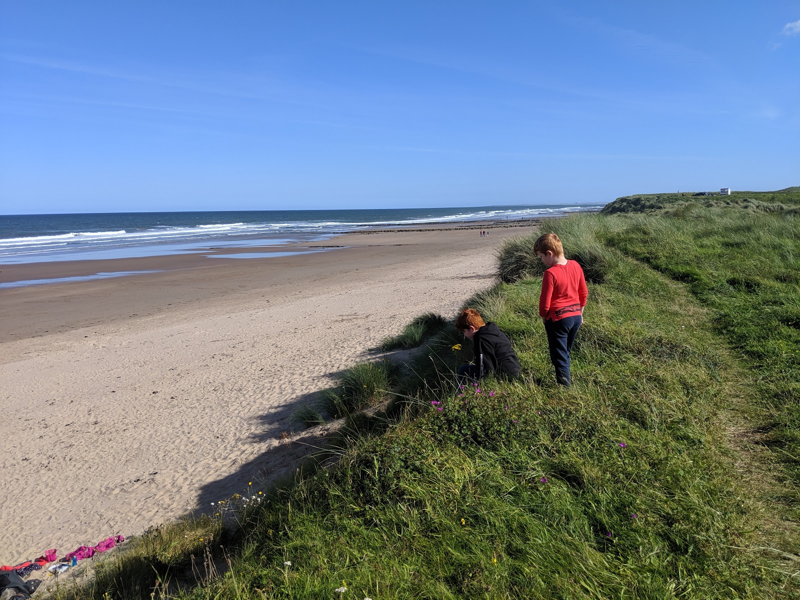 Things to do in Berwick -  Cocklawburn Beach