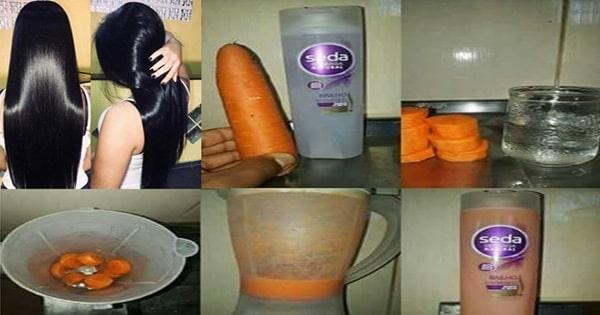 shampoo de cenoura para o cabelo crescer rápido