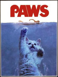 Funny cat paws jaws sea woman swimming cartoon picture