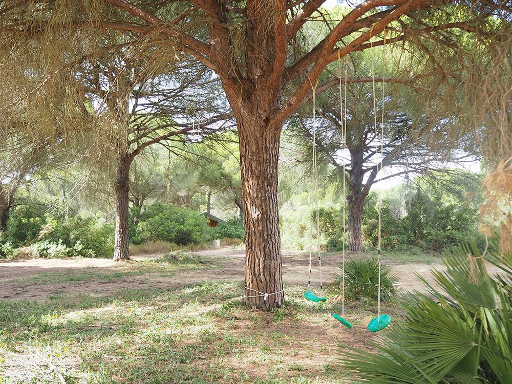 Jabalina Country Tents: Glamping en la Dehesa de las Yeguas de Cádiz_30